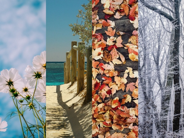 4 stagioni
